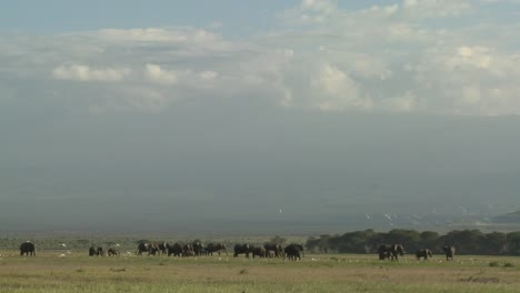 Clouds-move-in-time-lapse-over-a-herd-of-elephants-on-the-African-savannah