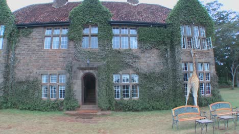 Giraffes-mill-around-outside-an-old-mansion-in-Kenya-3