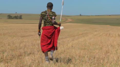 Ein-Massai-Krieger-Geht-Durch-Weizenfelder-In-Nordkenia
