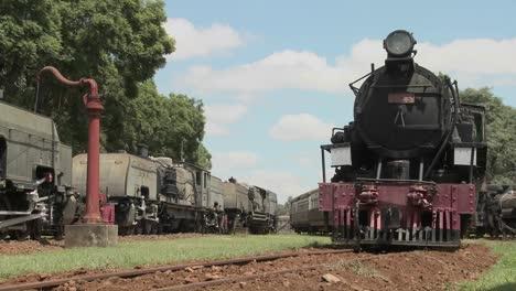 Old-rusting-steam-trains-sit-in-a-railway-yard