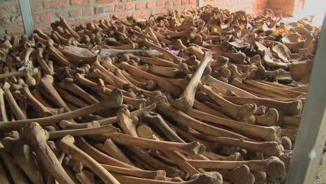 Leg-bones-of-skeletons-in-long-rows-offer-a-grim-remembrance-of-the-Rwanda-genocide