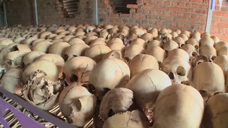 Slow-pan-across-hundreds-of-skulls-in-a-display-in-a-church-remembering-the-Rwandan-holocaust