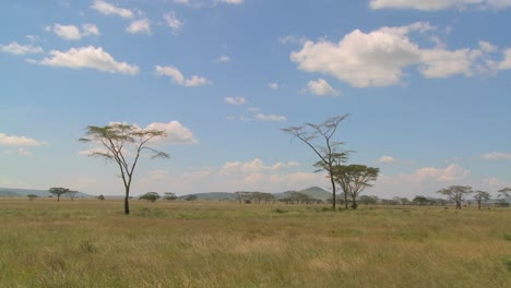 Clouds-linger-over-the-Serenegti-plain-in-Africa