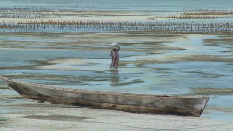 A-woman-walks-through-the-tide-with-a-load-on-her-head-in-Zanzibar