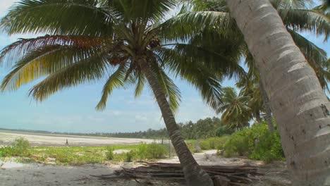 Pan-across-a-perfect-tropical-beach-on-a-tropical-island-paradise-1