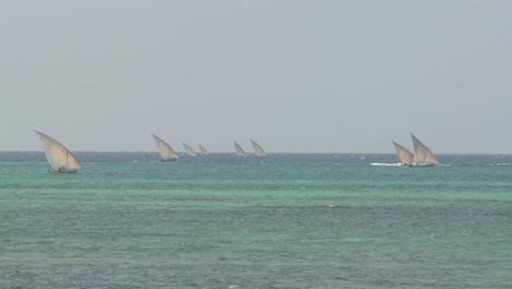 Dhow-sailboats-head-out-to-sea-off-the-coast-of-Zanzibar