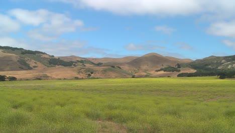 Schöner-Zeitraffer-Von-Wolken-Die-Sich-über-Grüne-Felder-In-Nord--Oder-Zentralkalifornien-Bewegen