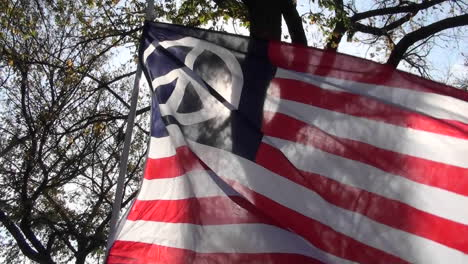 A-man-holds-up-an-American-flag-with-a-peace-sign-on-it-at-a-political-rally-in-Washington-DC-1