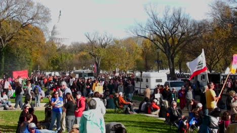 Huge-crowds-of-protestors-gather-on-the-mall-in-Washington-DC-for-a-protest-rally