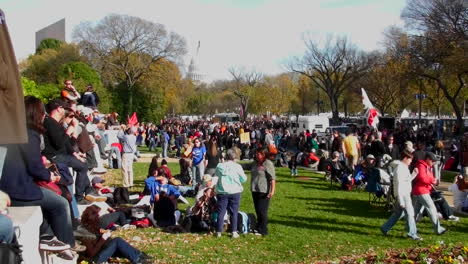 Huge-crowds-of-protestors-gather-on-the-mall-in-Washington-DC-for-a-protest-rally-1