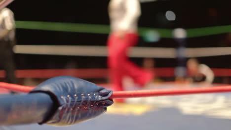 Wrestling-36