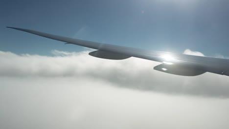 Plane-View-08