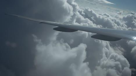 Plane-View-10