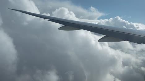 Plane-View-12