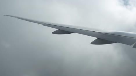 Plane-View-13