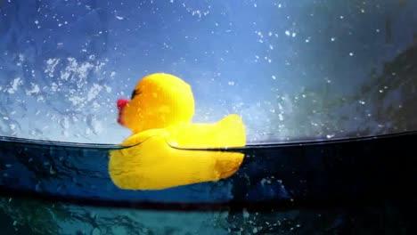 Plastic-Duckie-032