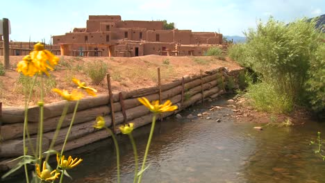 Yellow-flowers-near-the-Taos-pueblo-in-New-Mexico-1