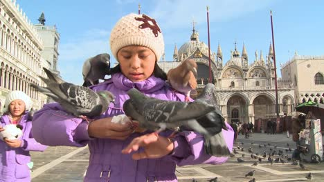 People-feed-the-pigeons-at-St-Marks-Square-in-Venice-Italy-2
