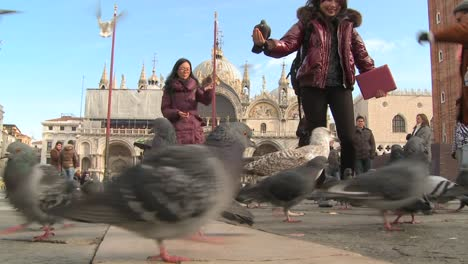 People-feed-the-pigeons-at-St-Marks-Square-in-Venice-Italy-3