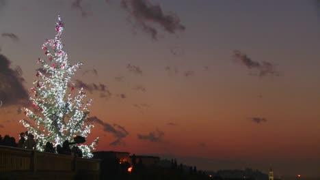 Un-árbol-De-Navidad-Contra-El-Anochecer