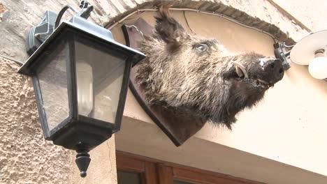 A-boar-head-hangs-outside-a-restaurant-in-Italy
