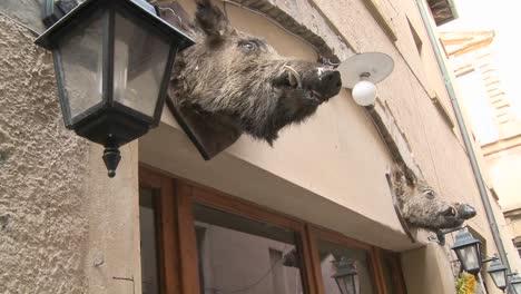Una-Cabeza-De-Jabalí-Cuelga-Fuera-De-Un-Restaurante-En-Italia-1