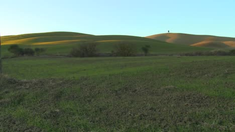 A-lonely-tree-stands-on-a-very-distant-hill-amongst-green-fields-in-Tuscany-Italy