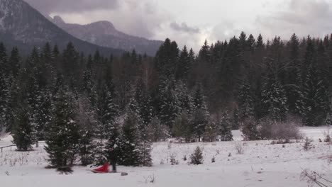 Sled-dogs-pull-a-rider-across-a-frozen-landscape