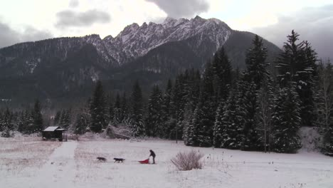 Sled-dogs-pull-a-rider-across-a-frozen-landscape-2