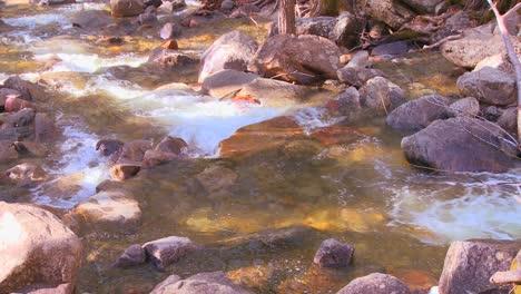 The-mountain-stream-flows-through-Yosemite-National-Park