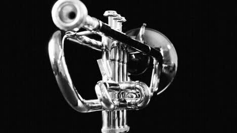 Trumpet-05