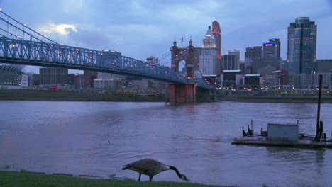 Nighttime-falls-over-Cincinnati-as-riverboats-pass-on-the-Ohio-River-4