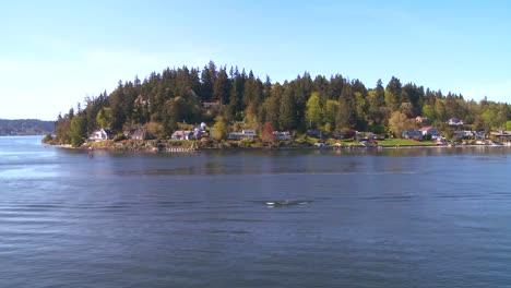 Shot-of-Bainbridge-Island-Washington-from-the-Seattle-ferry-boat