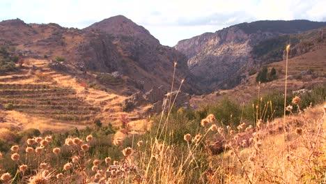 The-beautiful-hills-of-northern-Lebanon-glow-in-the-sun