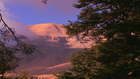 Pan-across-the-beautiful-mountains-of-Lebanon-with-cedar-trees-in-foreground