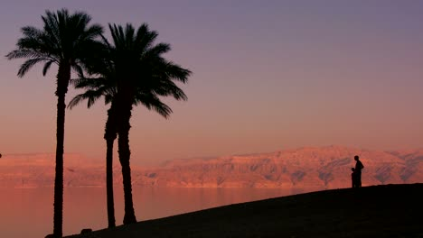 Palm-trees-and-a-father-and-son-in-silhouette-along-the-shoreline-of-the-Dead-Sea-in-Israel-at-dusk