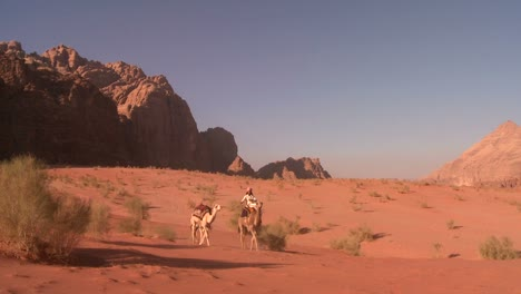 Camel-train-with-Bedouin-driver-moves-across-the-vast-desert-landscapes-of-Wadi-Rum-in-the-Saudi-deserts-of-Jordan