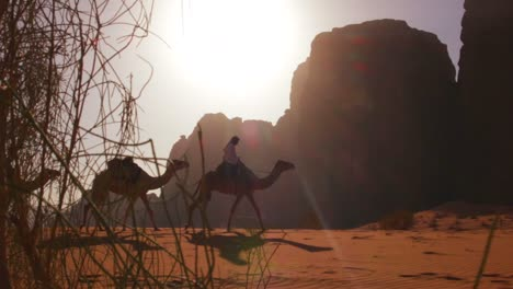 Camel-train-with-Bedouin-driver-moves-across-the-vast-desert-landscapes-of-Wadi-Rum-in-the-Saudi-deserts-of-Jordan-4