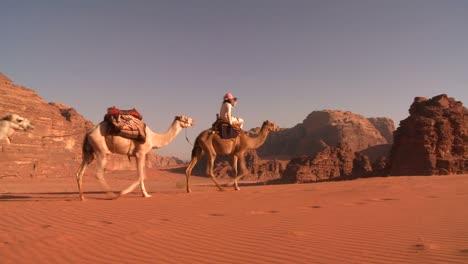 A-camel-train-passes-directly-over-the-camera-in-the-Saudi-desert-of-Wadi-Rum-Jordan-1