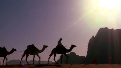 A-camel-train-crosses-the-Saudi-desert-in-Wadi-Rum-Jordan-1