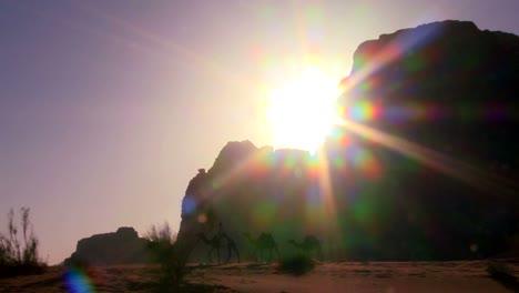 Pan-A-Través-De-Un-Amanecer-En-El-Desierto-Como-Un-Tren-De-Camellos-Cruza-El-Desierto-De-Arabia-En-Wadi-Rum-Jordania
