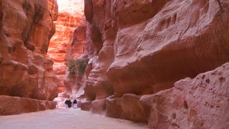 Los-Hombres-árabes-Caminan-Por-Los-Estrechos-Cañones-Que-Conducen-A-Petra-Jordan-1
