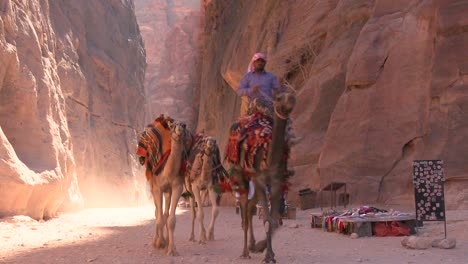 Men-camels-through-a-narrow-canyon-in-the-ancient-Nabatean-ruins-of-Petra-Jordan