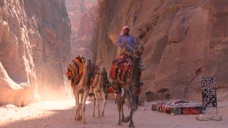Hombres-Camellos-A-Través-De-Un-Estrecho-Cañón-En-Las-Antiguas-Ruinas-Nabateas-De-Petra-Jordan