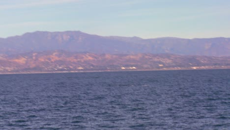 A-whale-dives-and-splashes-with-its-tail-off-the-coast-of-Santa-Barbara-California