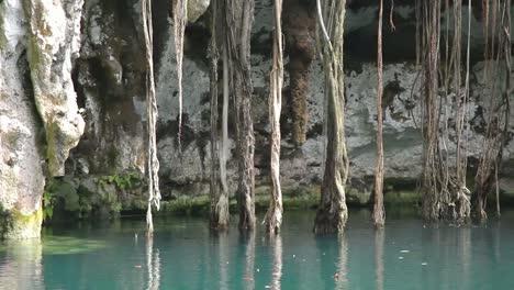 Cenote-03