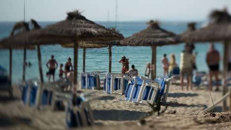 Deckchairs-Beach-00