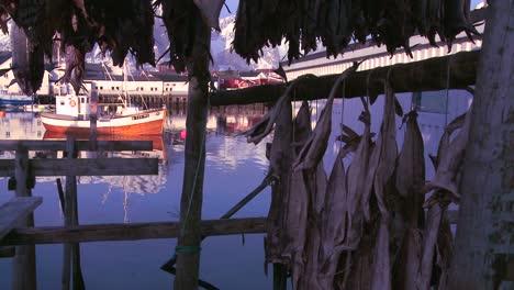 Los-Peces-Se-Cuelgan-Para-Secar-En-Bastidores-De-Madera-En-Las-Islas-Lofoten-Noruega-Con-Barcos-De-Pesca-En-Segundo-Plano-