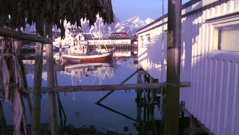 Fish-are-hung-out-to-dry-on-wooden-racks-in-the-Lofoten-Islands-Norway-with-fishing-boats-in-background-2