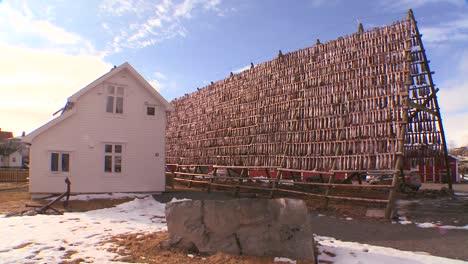 Los-Peces-Se-Cuelgan-Para-Secar-En-Bastidores-De-Madera-Piramidales-En-Las-Islas-Lofoten-Noruega